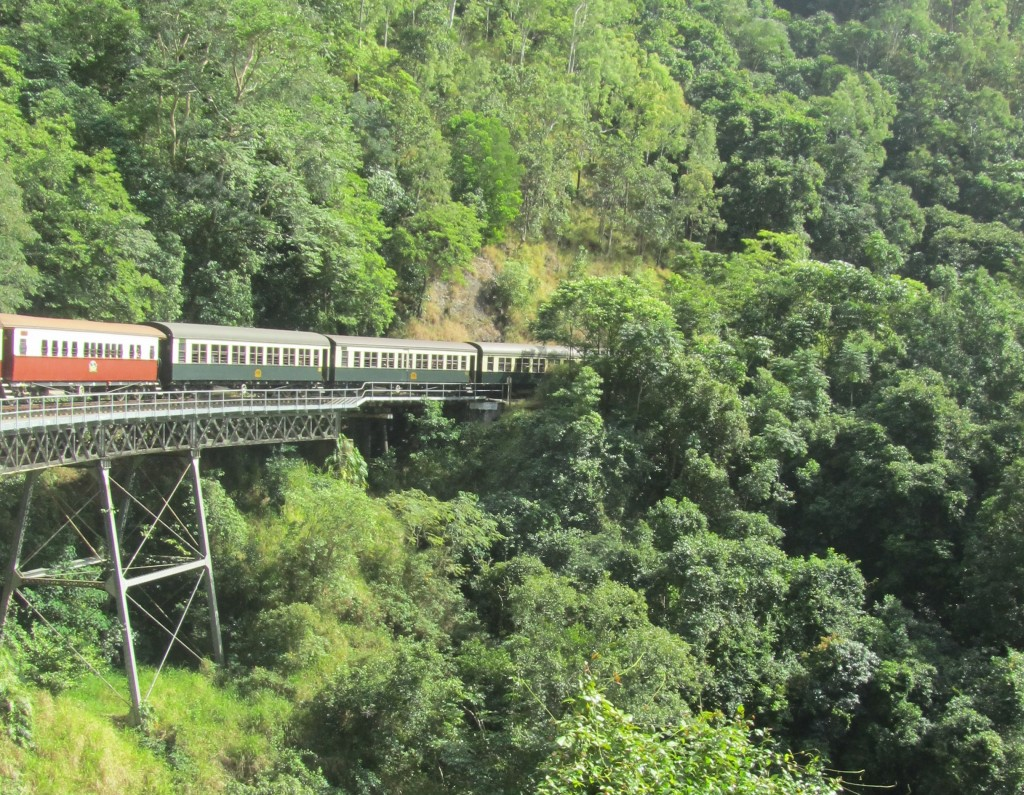 Our train disappearing into the tropical greenery on the Kuranda railway.